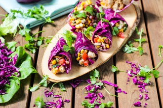 Dishtales Red Cabbage Wraps Cover Photo (1 of 1)